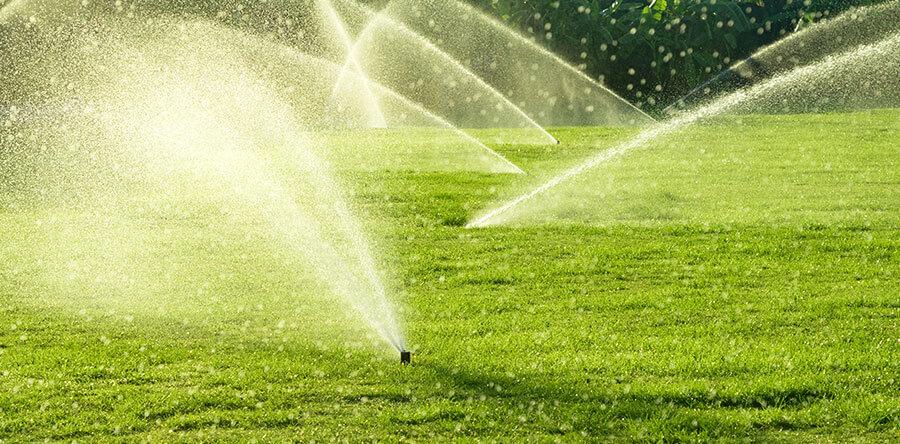 Gestire l'acqua in modo efficiente nel tappeto erboso