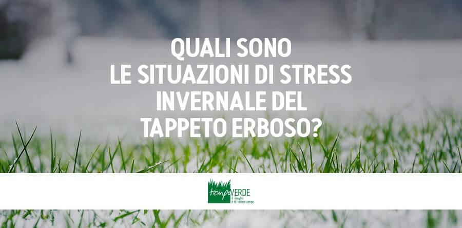 Quali Sono Le Situazioni Di Stress Invernale Del Tappeto Erboso?