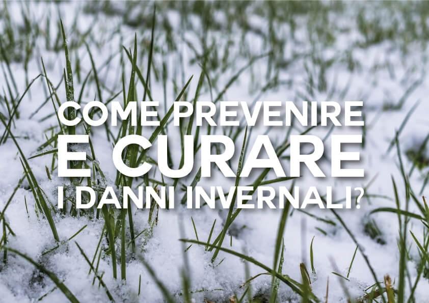 Come Prevenire e Curare i Danni Invernali?