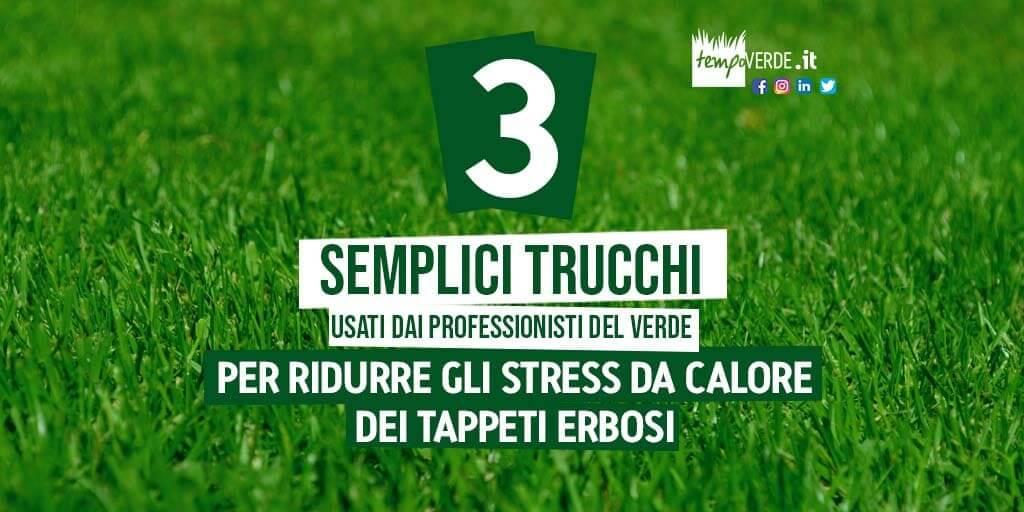 3 semplici trucchi usati dai professionisti del verde per ridurre gli stress da calore dei tappeti erbosi