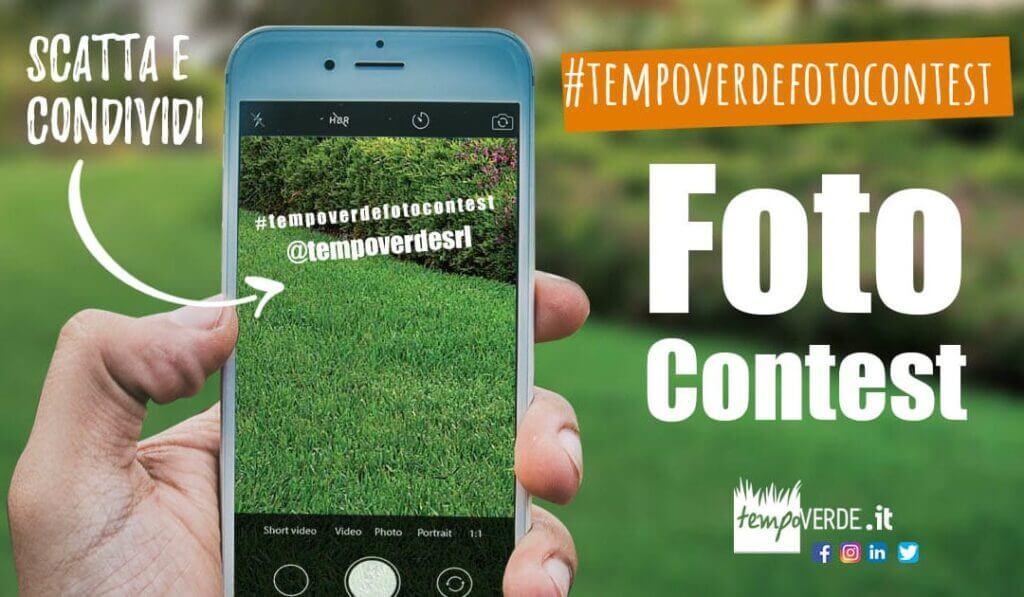 Partecipa al contest! Il tuo Prato è talmente bello che vorresti lo vedessero tutti? #tempoverdefotocontest!