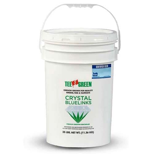 Crystal Blue Linkstra le nuove varietà diAgrostisè quella a più rapido impianto e capacità colonizzatrice.