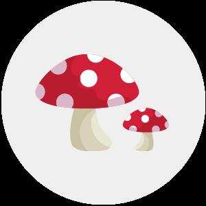 contro-malattie-fungine