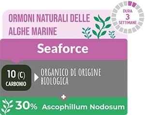 Ormoni naturali delle alghe marine TurFeed Pro Seaforce