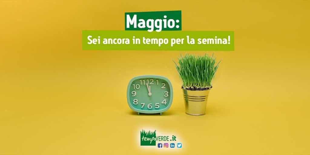 Maggio: sei ancora in tempo per la semina!